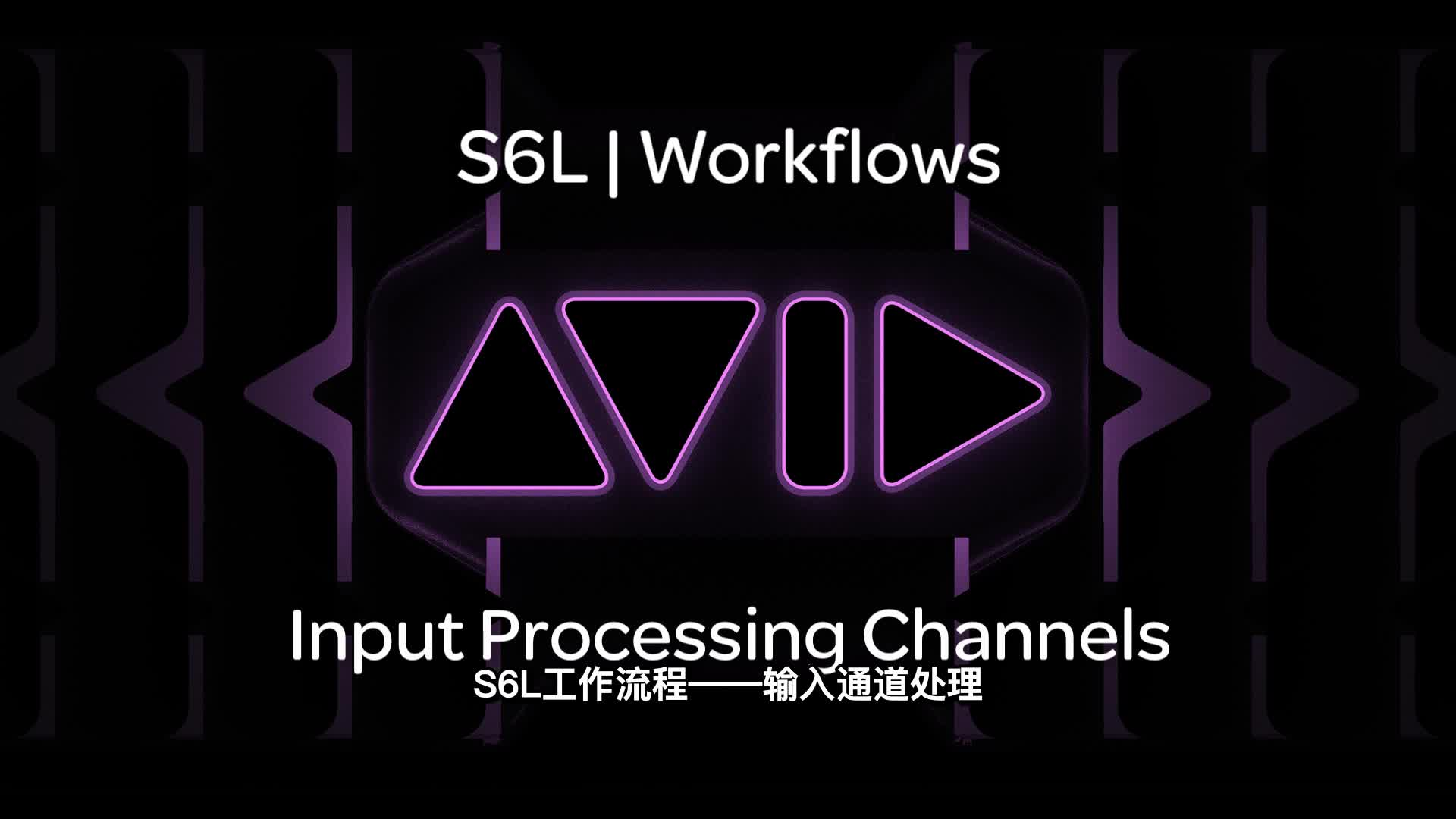 02 VENUE  S6L|Workflows Input Processing Channels