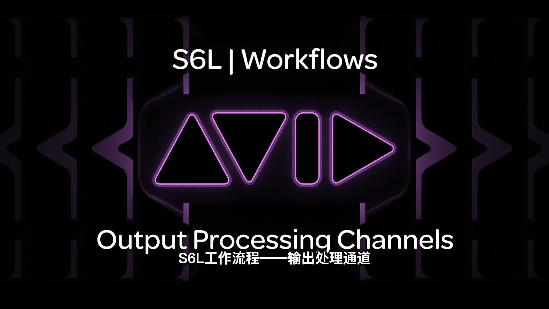 03 VENUE  S6L|Workflows Output Processing Channels