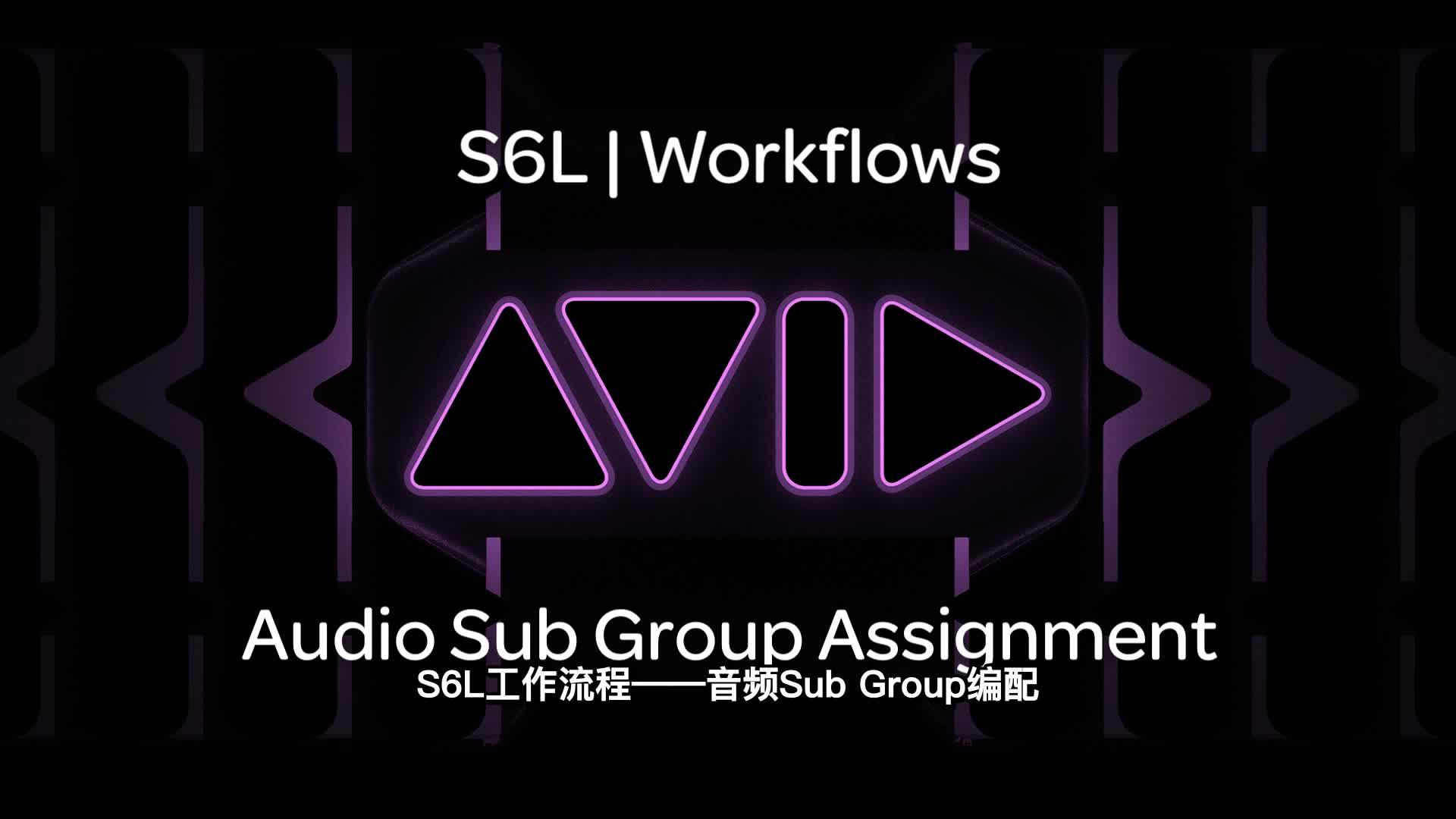 06 VENUE  S6L|Workflows Audio Sub Group Assignment